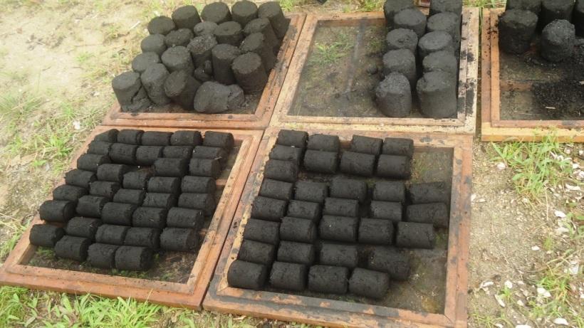 Des morceaux de charbon écologique après compactage. Crédit photo. Mathias Mouendé Ngamo